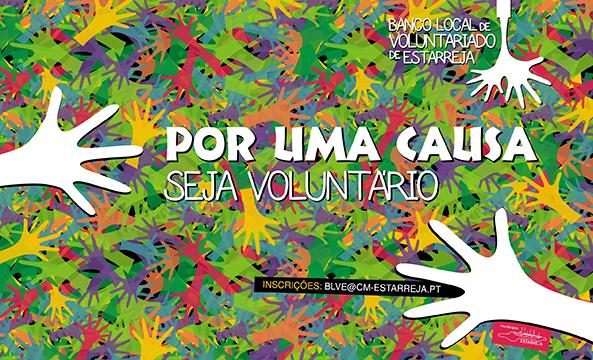 http://www.cm-estarreja.pt/ficheiros/fotos_destaques/BLVE__Banner_.jpg